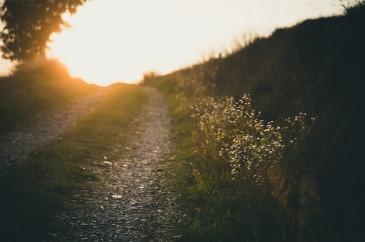 path-691233_640